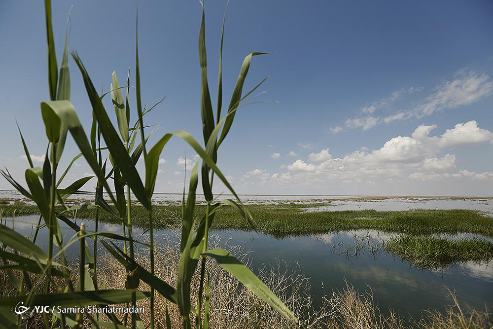 رکورد پر باران ترین سال آبی کشور